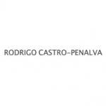 Rodrigo Castro Peñalva