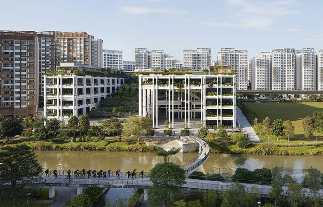 Oasis Terraces by Serie Architects + Multiply Architects