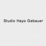 Hayo Gebauer