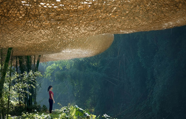 Bamboo Bamboo, Canopy and Pavilions, Impression Sanjie Liu, Chian by llLab
