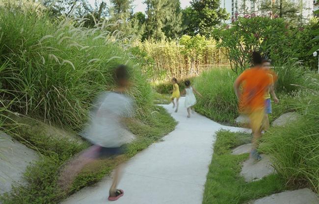梅丰社区公园,深圳 / 自组空间设计