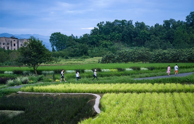 峨眉·高桥小镇,四川 / 四川乐道景观设计有限公司